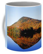 Autumn Colours Reflected In Water Coffee Mug