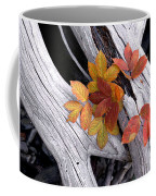 Autumn Driftwood 2 Coffee Mug