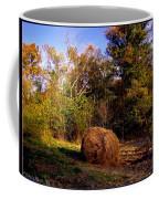 Autumn Evening Light Coffee Mug