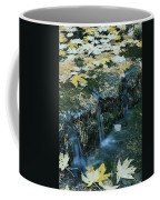 Autumn Foliage Floats Upon The Surface Coffee Mug