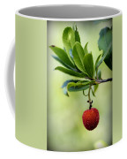 Autumn Fruits In Red Coffee Mug