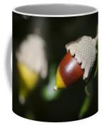 autumn fruits - Mediterranean acorn macro Coffee Mug