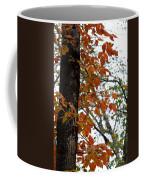Autumn Glory At Tannehill Coffee Mug