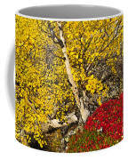 Autumn In Finland Coffee Mug