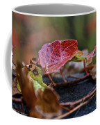 Autumn Ivy In Red Coffee Mug