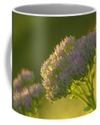 Autumn Joy Sedum Coffee Mug
