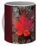 Autumn Leaf Art Iv Coffee Mug