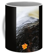 Autumn Leaf On River Rock Coffee Mug by Elena Elisseeva