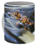 Autumn Leaves In Water Coffee Mug