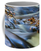 Autumn Leaves In Water IIi Coffee Mug