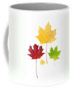Autumn Leaves Isolated Coffee Mug