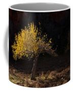 Autumn Light Coffee Mug by Mike  Dawson