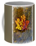 Autumn Maple Leaf In Water Coffee Mug