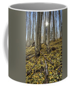 Autumn Memoirs  Coffee Mug