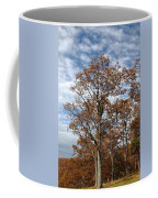Autumn Oaks White Clouds Coffee Mug