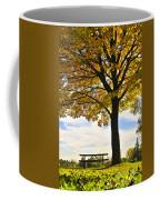 Autumn Park Coffee Mug by Elena Elisseeva