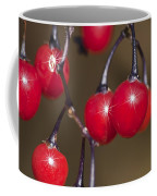 Autumn Red Berry Sparkle Coffee Mug