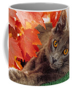 Autumn Reds And Ambers Coffee Mug