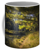 Autumn Scene Of The Little Manistee River In Michigan No. 0882 Coffee Mug