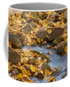 Autumn Slipping Away 0437 Coffee Mug