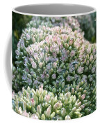 Autumn Stonecrop Coffee Mug