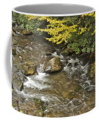 Autumn Stream 6149 Coffee Mug