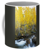 Autumn Stream Iv Coffee Mug