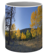 Autumn Sunset In Forest Of Golden Aspen Coffee Mug