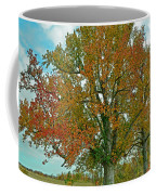 Autumn Sweetgum Tree Coffee Mug