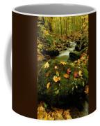 Autumn View Shows Fallen Leaves Coffee Mug