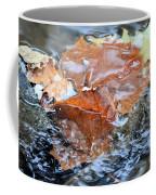 Autumn Waters Coffee Mug
