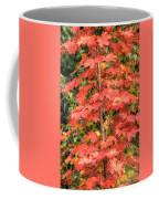 Autumnal Acer Coffee Mug
