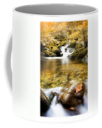 Autumnal Stream Coffee Mug by Mal Bray