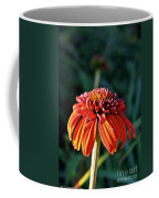 Autumn's Cone Flower Coffee Mug