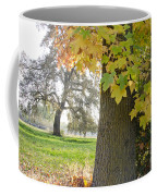 Autumn's Gold Coffee Mug