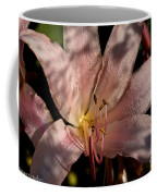 Autumn's Lily Coffee Mug