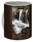 Avalanche Creek - Glacier National Park Coffee Mug