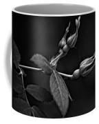 Awakening Monochrome Coffee Mug