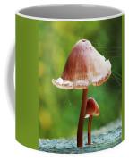 Baby And Parent Mushroom Coffee Mug