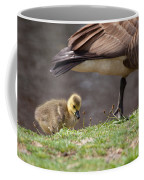 Baby Back Coffee Mug