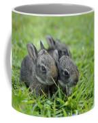 Baby Bunnies Coffee Mug