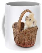 Baby Guinea Pig In A Wicker Basket Coffee Mug