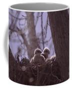Baby Hawks Coffee Mug