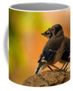Baby Jays Coffee Mug