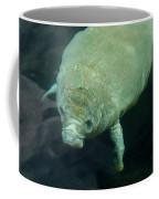 Baby Manatee Coffee Mug