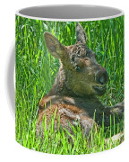 Baby Moose Coffee Mug