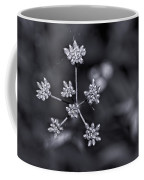 Baby Queen Anne's Lace Monochrome Coffee Mug