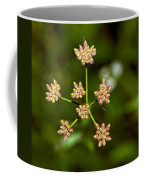 Baby Queen Anne's Lace Coffee Mug