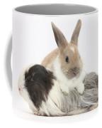 Baby Rabbit And Long-haired Guinea Pig Coffee Mug