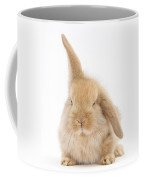 Baby Sandy Lop Rabbit Coffee Mug